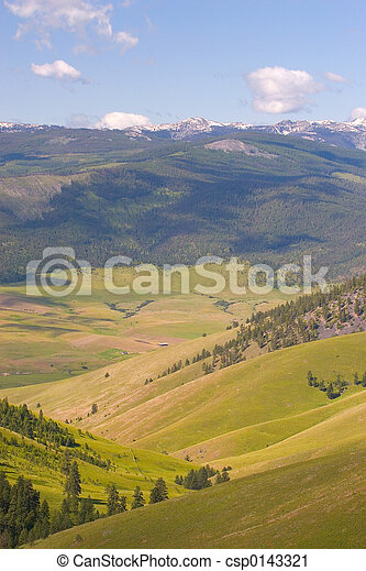 serie, bisonte, nazionale, bufalo - csp0143321