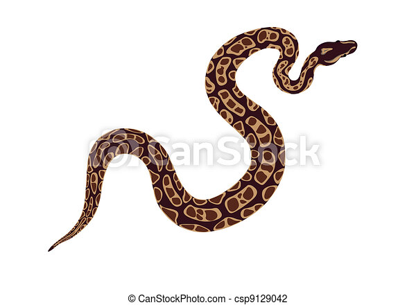 Serpiente - csp9129042