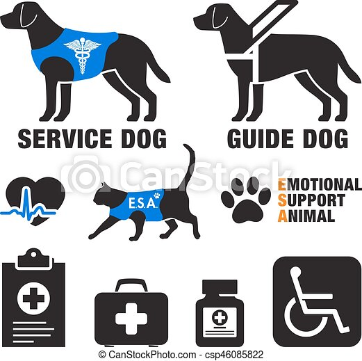 Can I Register My Dog As A Service Animal