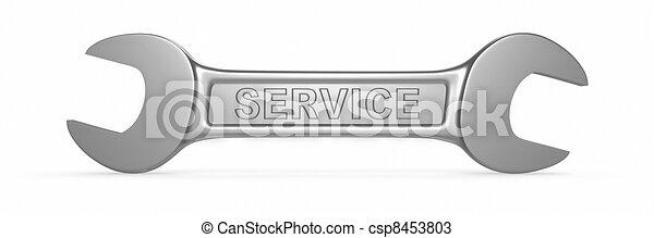 Service - csp8453803