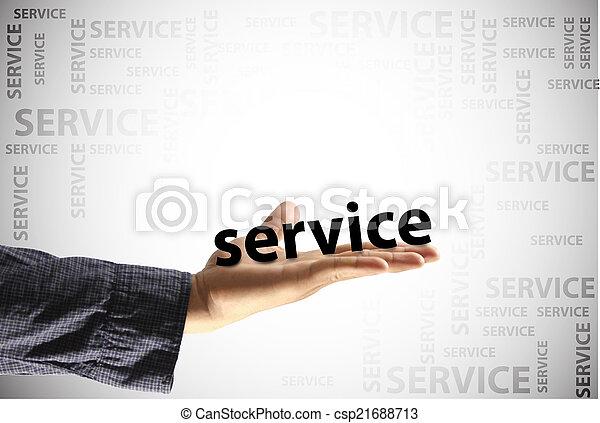 service - csp21688713