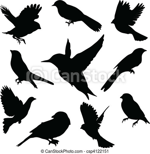 set, birds.vector - csp4122151