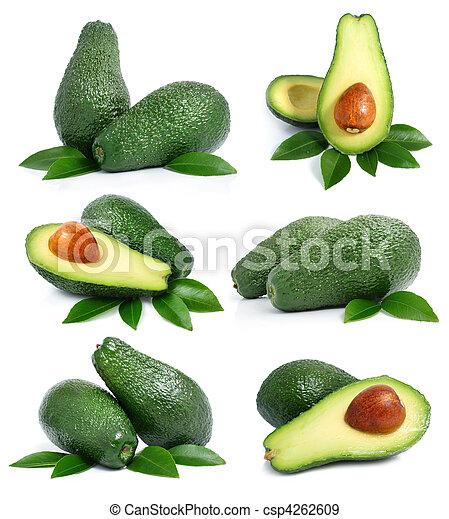 set, blad, avocado, vrijstaand, groene, vruchten, witte  - csp4262609