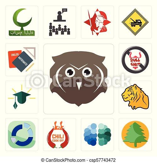 set, icone, no, gufo, spento, educazione, libero, cervello, pinetree, cuoco, settore, bullshit, peperoncino, compito, tiger - csp57743472