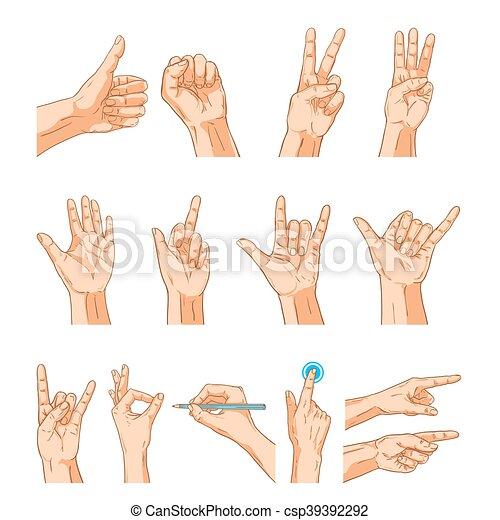 f7e488b40a Set., isolé, collection, signe, vecteur, mains humaines, blanc, geste.