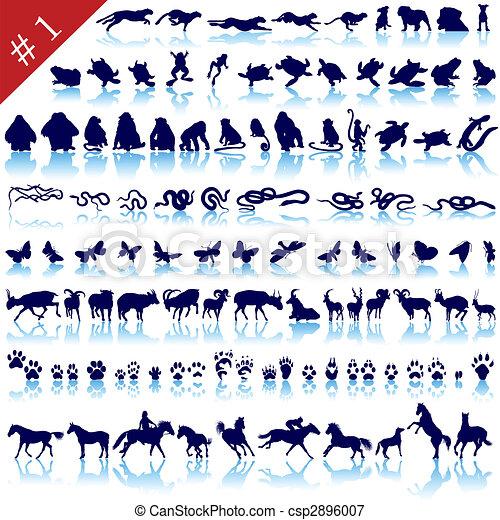 set of animal silhouettes - csp2896007