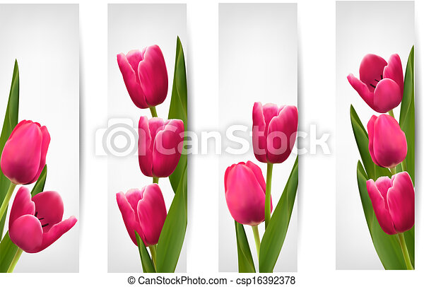 Set of banners with pink flower. Vector - csp16392378