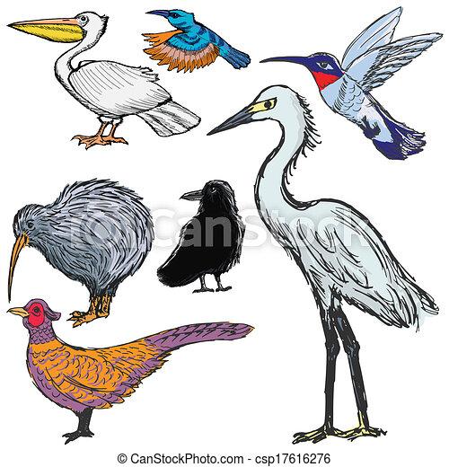 set of birds - csp17616276