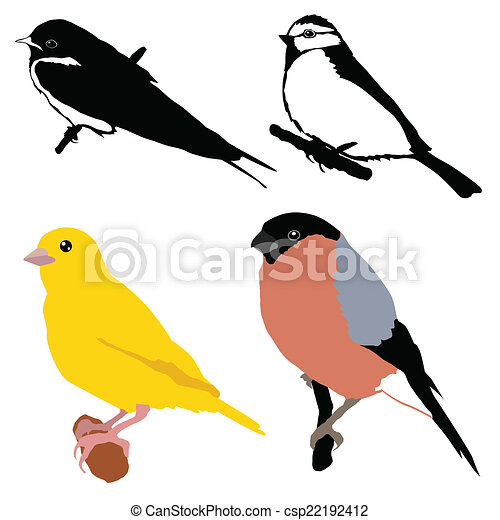 set of birds - csp22192412