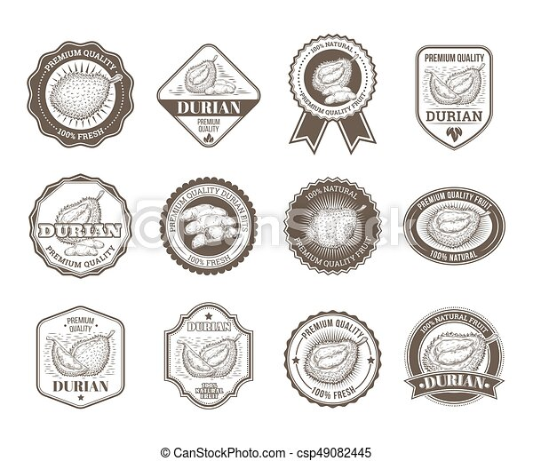 Set of black and white vector badges stickers high quality signs with durian fruit