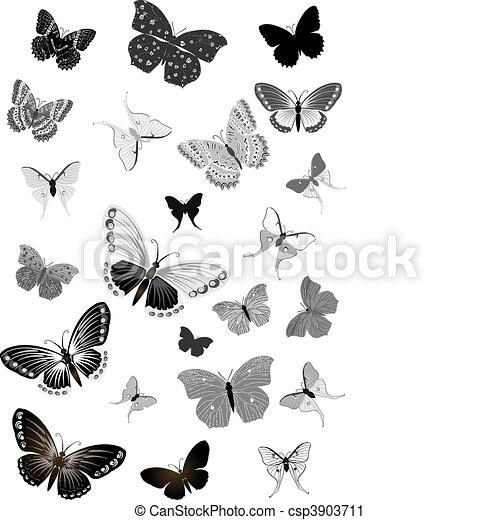 set of black butterflies - csp3903711