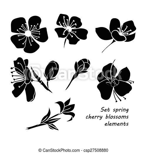 Set of black silhouette spring cherry blossom flowers - csp27508880