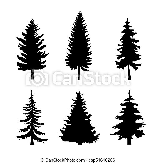 Set of Black Silhouettes of Pine Trees on White Background - csp51610266