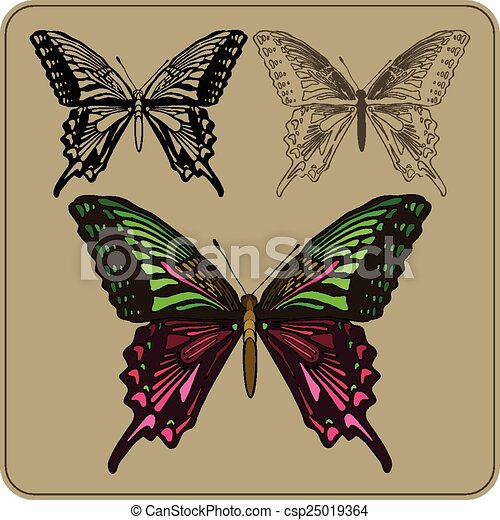 Set of butterflies, hand-drawing. Vector illustration - csp25019364