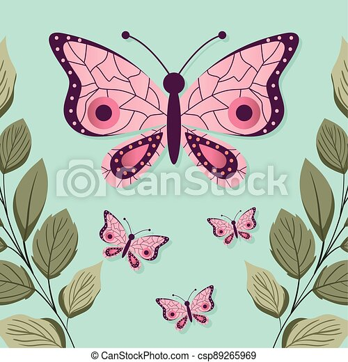 set of butterflys with a pink color - csp89265969