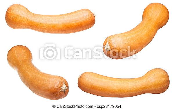 set of butternut pumpkins isolated - csp23179054