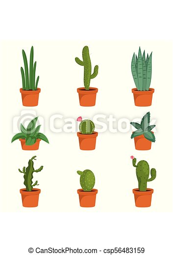 Set Of Cactus Houseplants In Flower Pots Cactus Icons In A Flat Style On A White Background Succulent Plants Vector Canstock