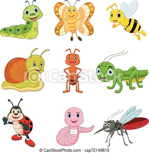 Set of cartoon insects - csp72149815
