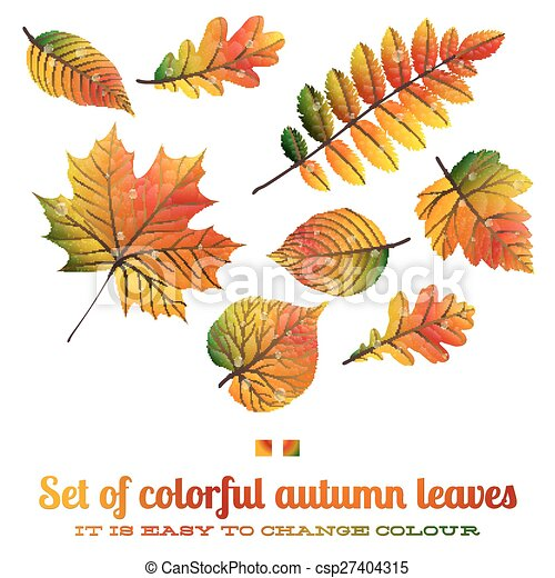 Set Of Colorful Autumn Leaves Eps 10 Set Of Colorful Autumn Leaves It Is Easy To Change Colour Eps 10 Vector File