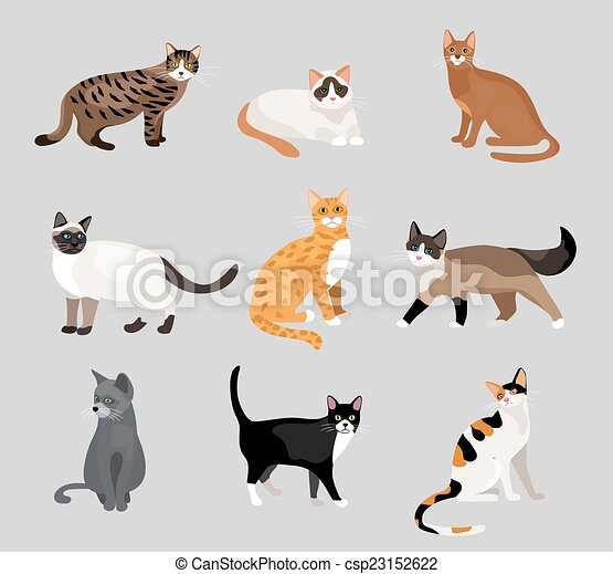Set of cute cartoon kitties or cats - csp23152622