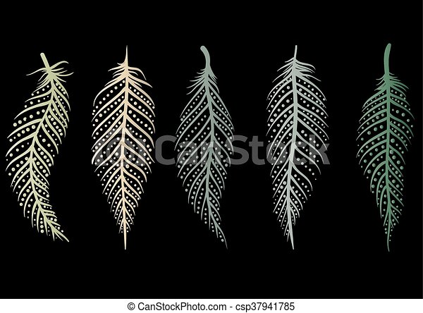 Line Art Feather : Set of decorative feathers five multicolored vector