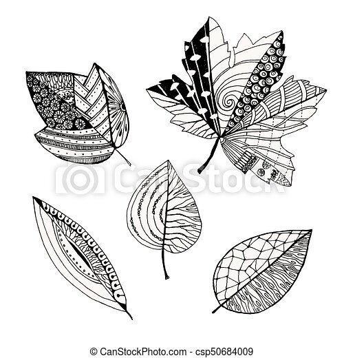 Set Of Decorative Leaves Doodle Sketch Vector Illustration Isolated On White