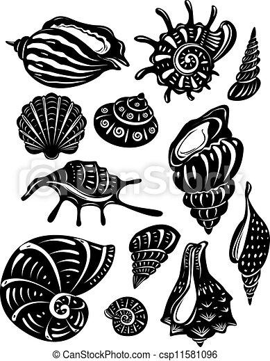 Set of decorative shell - csp11581096