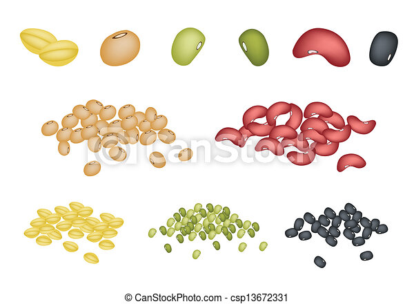 Set of Different Beans on White Background - csp13672331