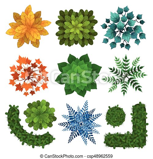 Set of different green trees, shrubs, hedges. Top view for landscape design projects. Vector illustration, isolated on white. - csp48962559