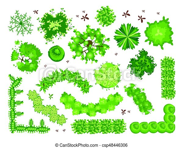 Set of different green trees, shrubs, hedges. Top view for landscape design projects. Vector illustration, isolated on white. - csp48446306