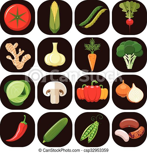 Set of different kinds of vegetable - csp32953359