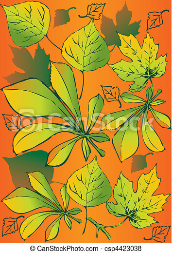 Set of different leaves. - csp4423038