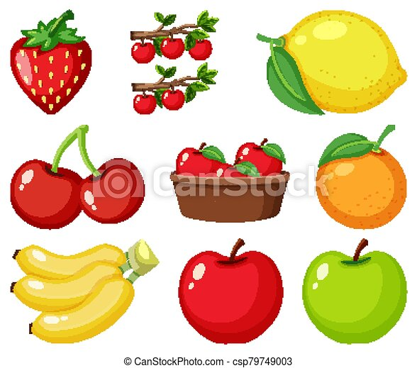 Set of different kinds of fruits icons. collection of flat design icons  presenting different types of fruits isolated on