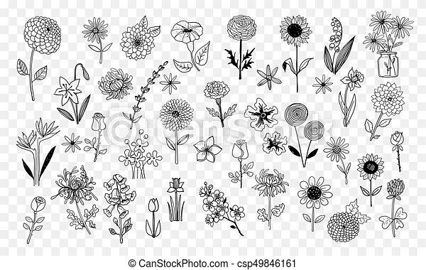 Set of doodle sketch flowers. Vector illustration. - csp49846161