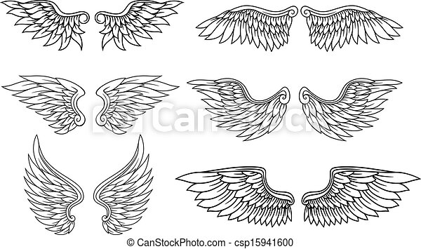 Set of eagle or angel wings csp15941600