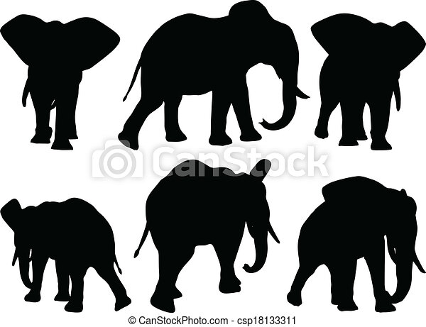 set of editable vector silhouettes of african elephants in walk poses