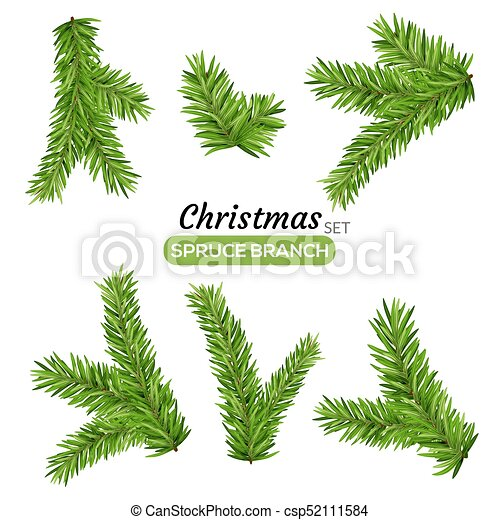 Christmas Branch Vector.Set Of Fir Branches Christmas Tree Or Pine Branch Vector Evergreen Illustration Fir Isolated Holiday Decoration