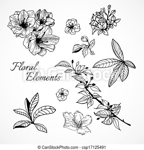 Set of floral elements - csp17125491