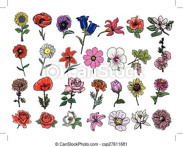 set of flowers - csp27611681