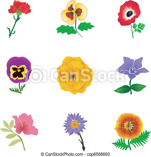 Set of flowers - csp6568660