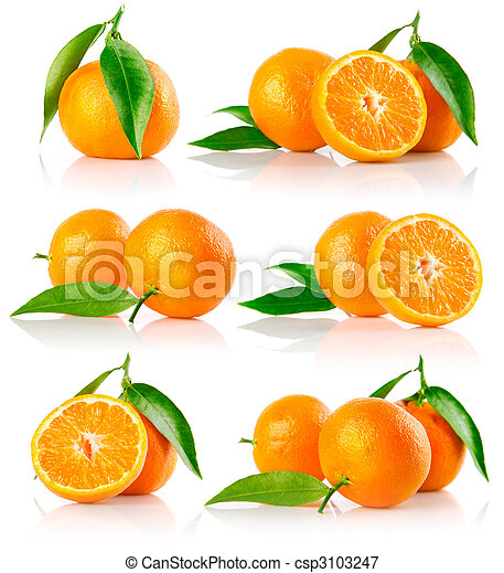 set of fresh mandarine fruits with cut and green leaves - csp3103247