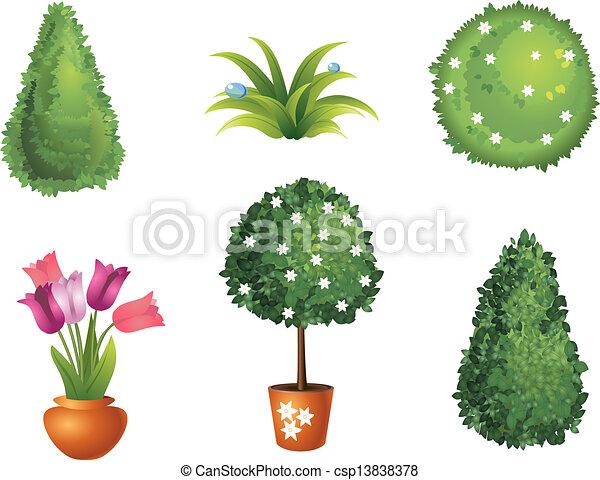 Set Of Garden Plants Vector