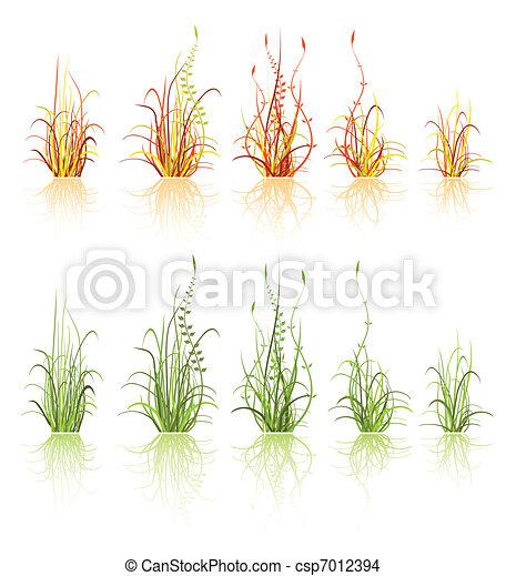 set of grass  - csp7012394