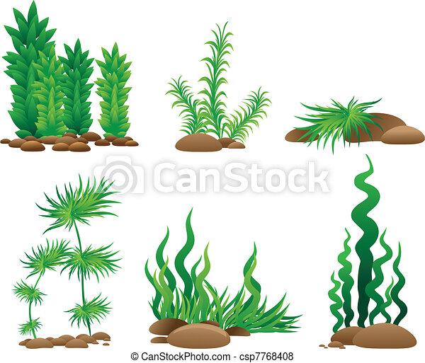 Set of grass - csp7768408