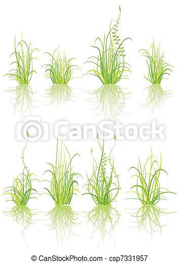 set of grass  - csp7331957