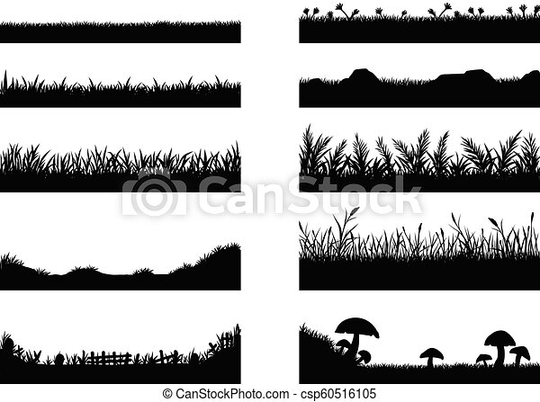 Set of grass vector on white background. Grass vector by hand drawing. - csp60516105