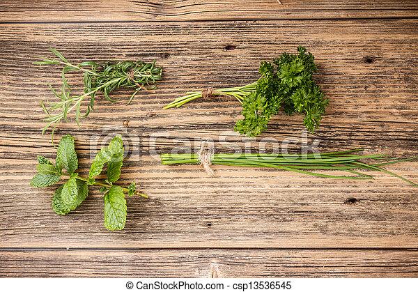 Set of green herbs - csp13536545