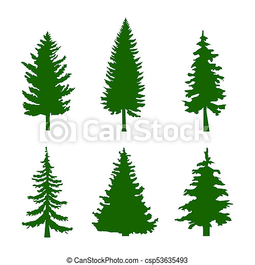 Set of Green Silhouettes of Pine Trees on White Background - csp53635493