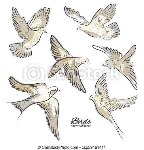 Set of hand drawn birds with golden sparkles isolated on white background. Vector illustration. - csp59461411
