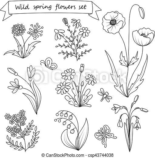 Set Of Hand Drawn Wild Spring Flowers Vector Illustration Botany